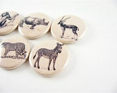 6 Animal Magnets / African Safari / 6 one inch fridge magnets / magnabilities - PipingHotPapers