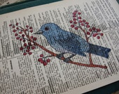 Blue Bird with Red Berries Print on Vintage Dictionary Page - digiliodesigns