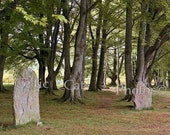Scotland Photography Dorm Decor Landscape Photo Fine Art Standing Stones 5 x 7 Photo - Celticcatphotos