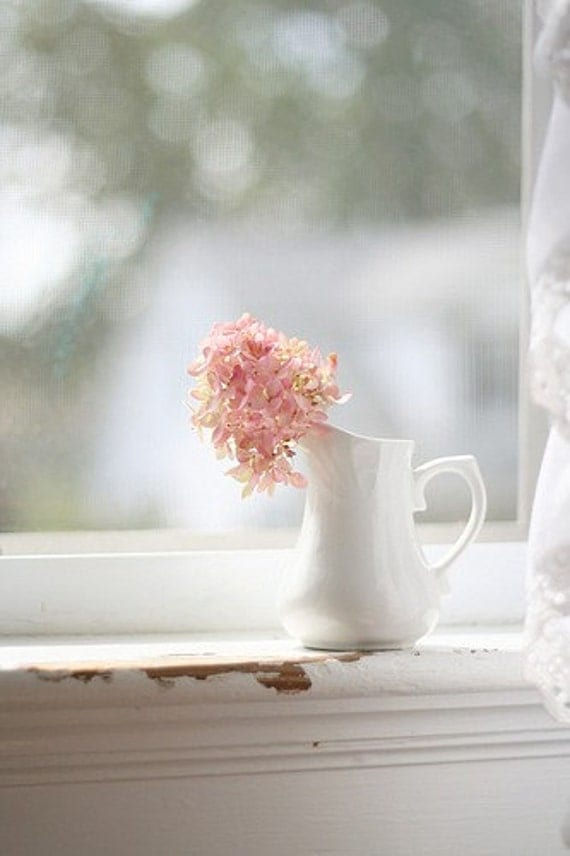 Pink romantic hydrangea white vintage vase bokeh feminine baby girls nursery 8x10 fine art photograph photo wall decor home