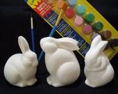 DIY Bunny Rabbit Set - Paint Your Own Ceramics