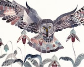 Grey Owl and Lady Slippers -Large  Archival Print - unitedthread