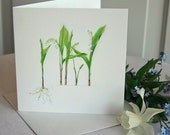 Lily-Of-The-Valley Card