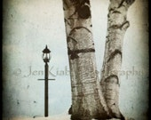 Waiting for Mr. Tumnus - Fantasy Landscape Fine Art Print - Jenkiabaphotography