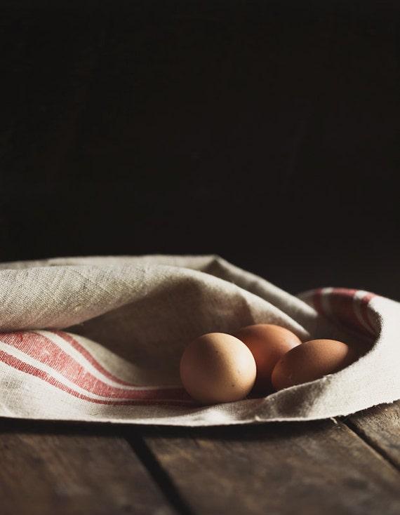 Brown Eggs 8x10 photo