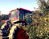 Tractor in the Orchard - Farm Apples Photography Blue Orange Green Autumn Spring North Carolina NC Fine Art Lustre Print - 8x10 Photograph - FlashForward