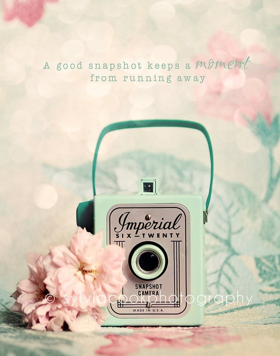Shabby chic home decor-vintage Imperial camera-fine art print-spring home decor barkcloth-pink and green