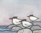 Terns 3x3 Watercolor Illustration Print