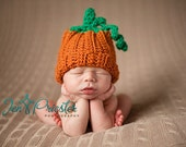 Little Pumpkin Hat - britt6934
