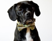 Pistachio Green Plaid Dog Bow Tie Collar - SillyBuddy