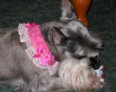 Super Sweet Dog Collar Cover with Collar Bows - Choose Color
