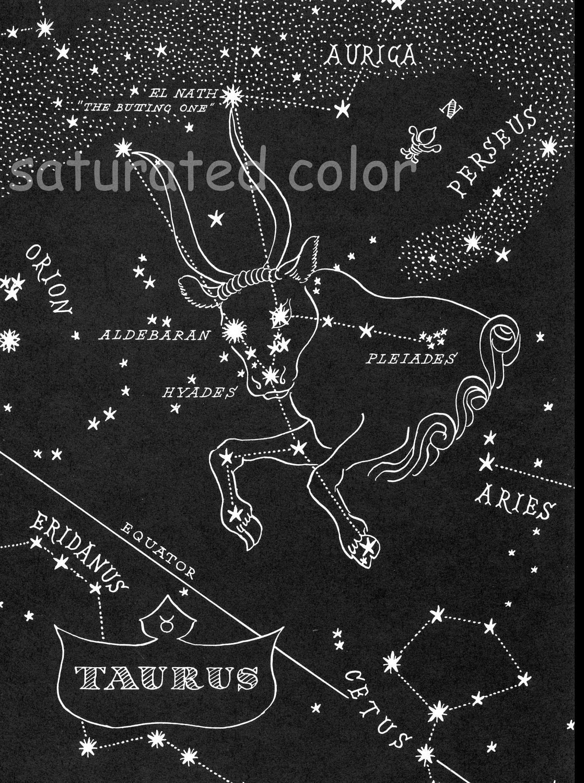 Taurus Constellation Story