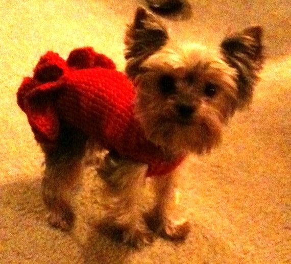 "PDF Knit Pattern for ""Party Dress"" Sweater for Small Breed Dogs"