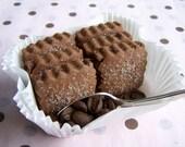Chocolate Espresso Cookies - 3 Dozen MINI Shortbread - ButterBlossoms