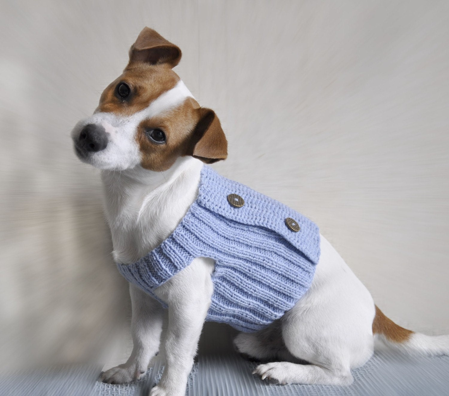 Free Crochet Pattern For Small Dog Booties : Knitted Sweaters For Small Dogs Free Patterns