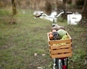 Wood Bike Basket