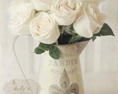 Blanc du Jardin- White Roses in Pitcher- French Cottage Chic- Beige- Neutrals- Flowers- Still Life Photography- 8x10 Fine Art Print - kellynphotography