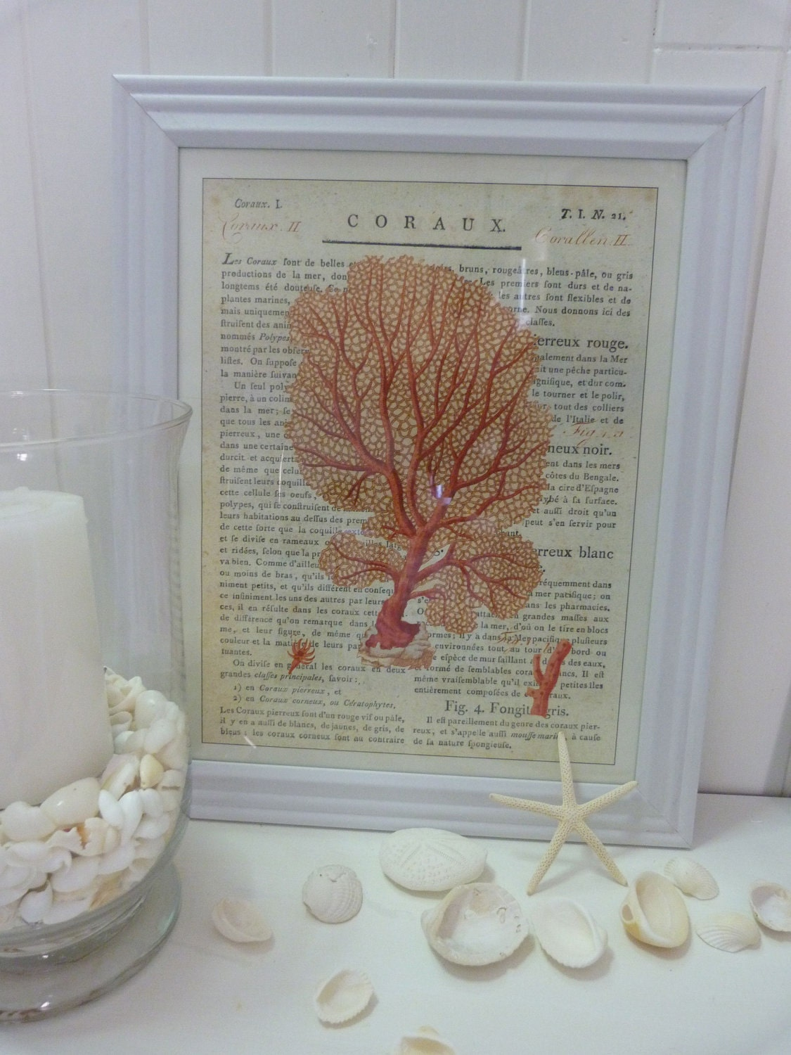 cavallini coral prints white frame coastal by beachcomberhome