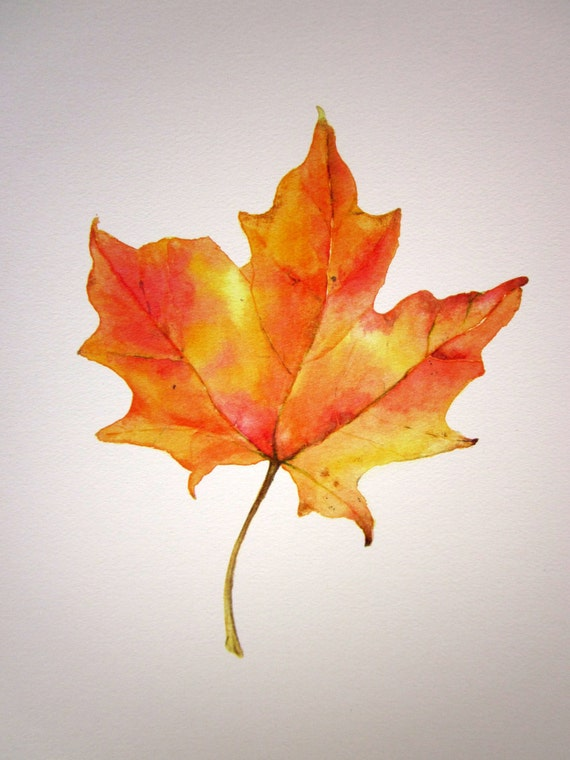 "Giclee Print of Original Watercolor Painting ""Maple Magic"""