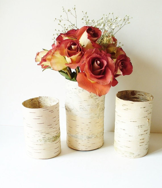 Birch Bark Vase Rustic Country Cottage Farmhouse Woodland Natural Wedding Table Setting Set of 3