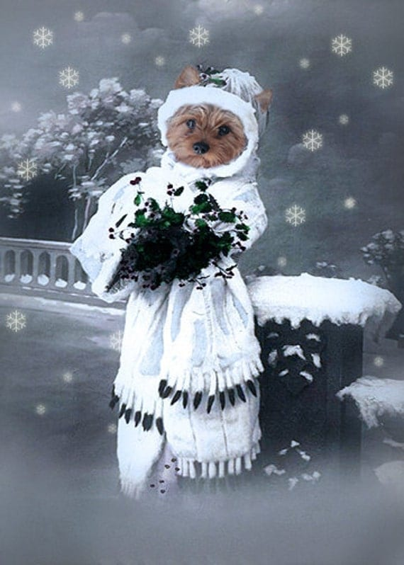Yvonne - Vintage Dog 5x7 Print - Anthropomorphic - Altered Photo - Christmas Art - Whimsical Art - Snow - Gift Idea - Blue - Photo Collage