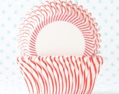 Red Pin Stripe Cupcake Liner - ConfettiSunshine