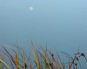 Moon Reflection 2, 8x10 Fine Art Photograph - water photo calm peaceful grass reeds blue green orange brown - KristelPhears