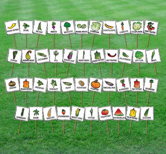 Set of 15 Hand Drawn Garden Markers