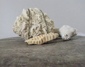 handmade ceramic necklace, cocoon sculpture, pale sepia - driftwoodandfossil