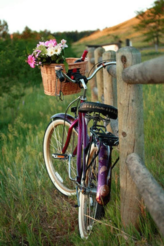 Summer Bike Photography, Purple,  8INCHES BY 12 INCHES ,Original Summer Photograph, Fine Art Print, Beach Bike Photography, Retro Bike