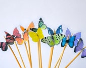 Itsy Bitsy Mini Edible Butterflies - Rainbow Assortment set of 48 - for Cake Decorating and Cupcake Toppers - SugarRobot