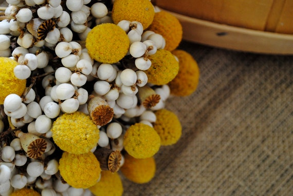 Cotton Boll Bridal Bouquet - Natural Cotton - Raw Cotton - Cotton Bolls - Wedding - Bride - Bridesmaid - Billy Balls - Harvest