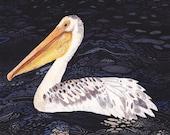 Pelican at Night- Archival Print - unitedthread