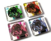 Dog Magnets,  Pop Art Dog, Shih Tzu - BluKatDesign