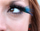 Blue Peacock Feather False Eyelashes - CatsMeow1940