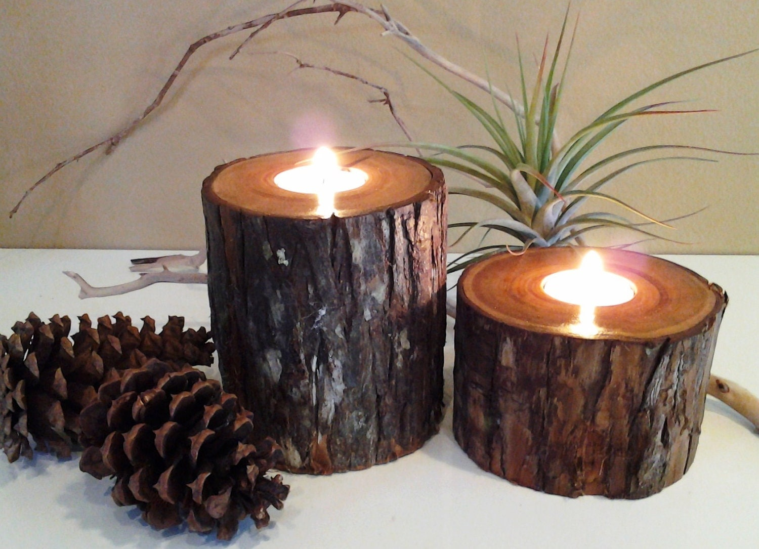 TREASURY ITEM Cypress Tree trunk Candleholders by JTLCREATIONS