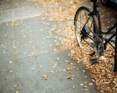 Bikes and Fall Leaves - a 5x7 film print - hisampersandhers