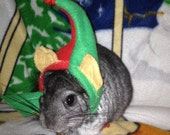 Tiny Elf Hat for Guinea Pigs, Chinchillas, Rats and  Ferrets XXSmall - hatz4brats