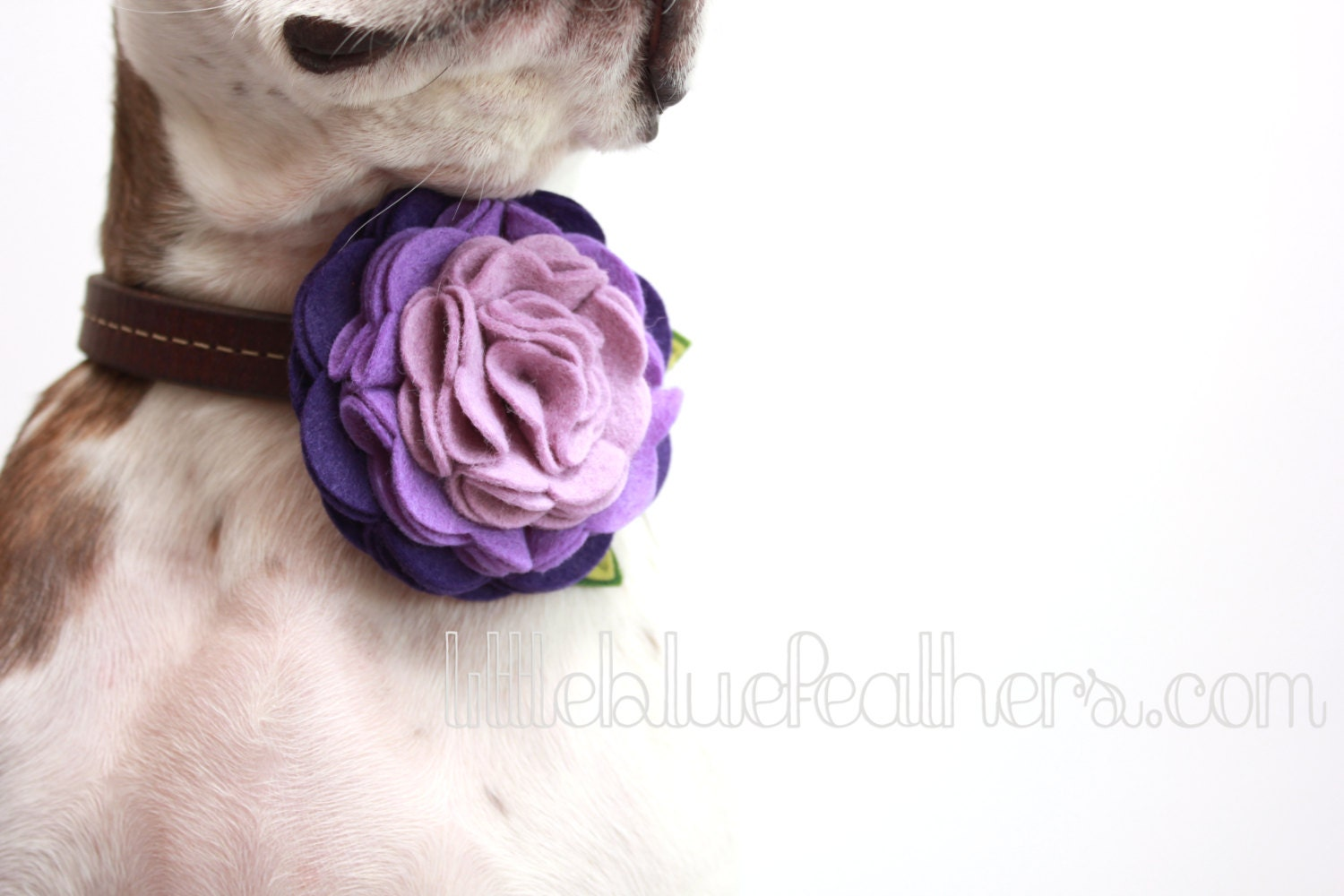 Ombre Rosette Felt Flower Dog Accessories By