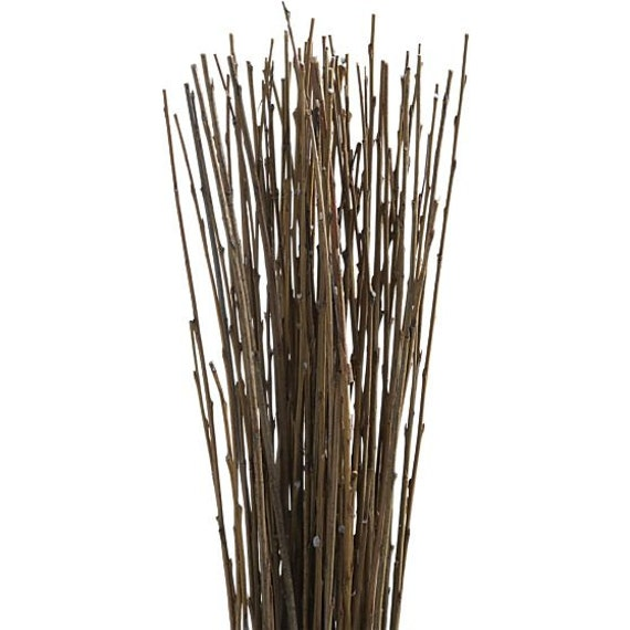 Asian willow in bundles of 100-Wedding Floral Branches-Home decor-Tree branch