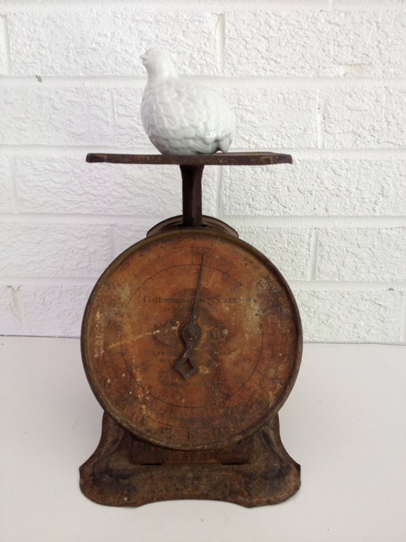 Rusty Antique Kitchen Scale - Columbian Family Scale