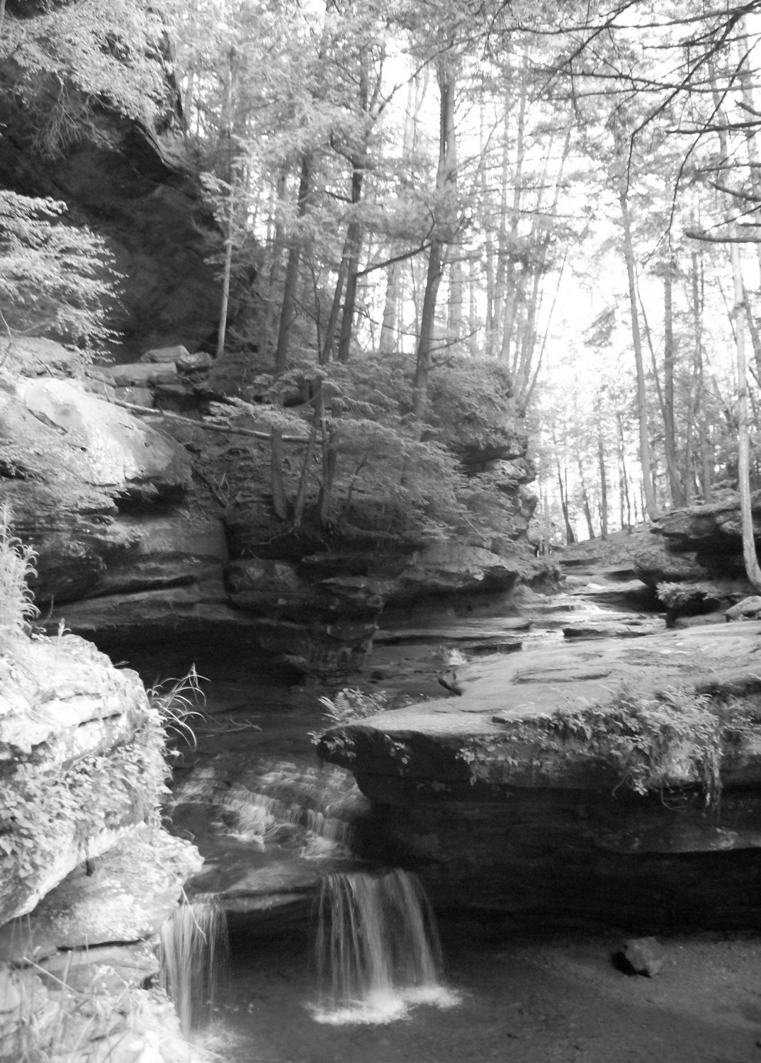 5x7 natural waterfall forest photography unedited original photograph black and white fine art print river scene nature