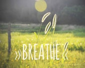 8x10 Breathe. Typographic Print. Inspirational. Foxtails. Sunset. Nature Photography. Wall Art. Home Decor. Green. Summer. Field. Typography - TheCrookedCamera
