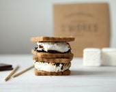 S'mores Kit with house-made graham crackers and marshmallows - whimsyandspice