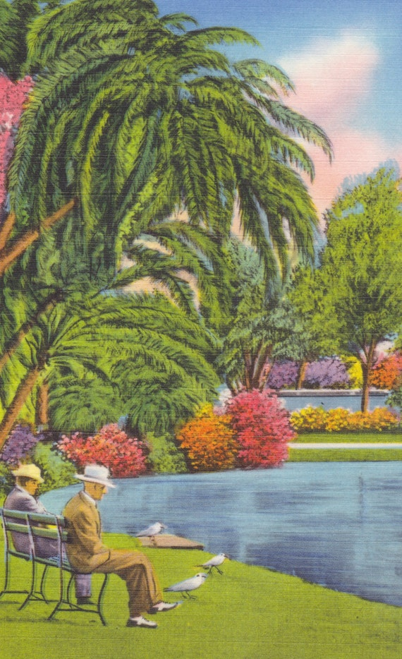 St. PETERSBURG, FLORIDA - Mirror LAKE, Men Sitting on a Bench, Vintage Linen Postcard, c. 1940s, Tichnor Bros.