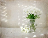 Vase of White Flowers Photograph - white mums green light cottage chic shabby chic feminine timeless 8x10 for her mothers day - FirstLightPhoto