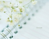 5x7 dream-notebook-baby breath flowers-fine art photography print - KrisOnealPhotography