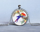 MACAW PENDANT Red Blue Yellow Green Bird Pendant Bird Necklace Bird Lover Gift Bird Jewelry Animal Lover Gift Nature Lover Gift Parrots - WilloughbyPendants