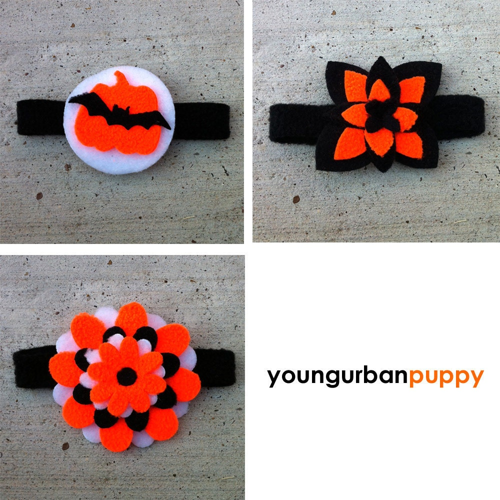 Halloween Neon Orange and Black Flower or Collar Tie for Dogs