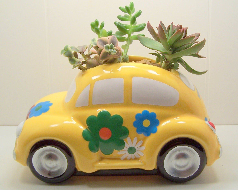 Succulent planter LOVE Bug DIY kit